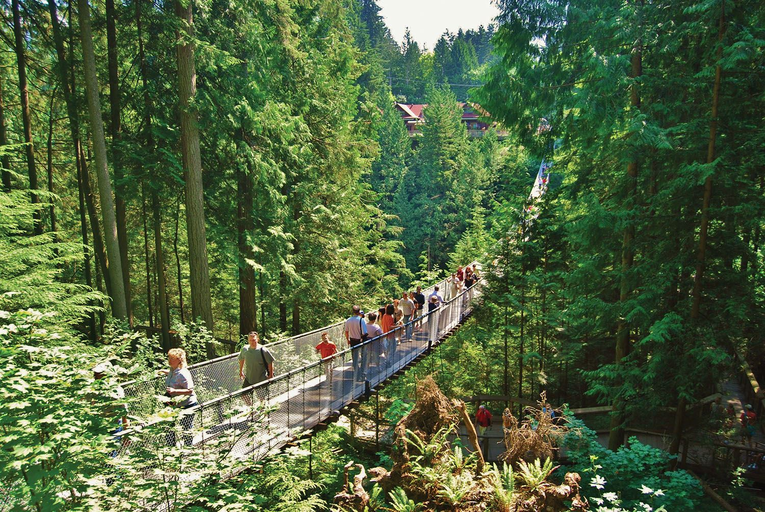 Canada capilano suspension bridge vancouver 01