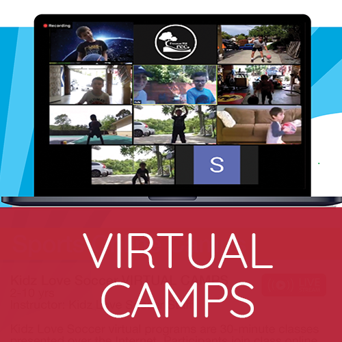 Virtual Camps image (laptop showing Zoom call)
